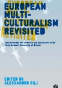 Обложка книги  - European Multiculturalism Revisited