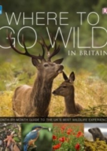Обложка книги  - RSPB Where To Go Wild in Britain