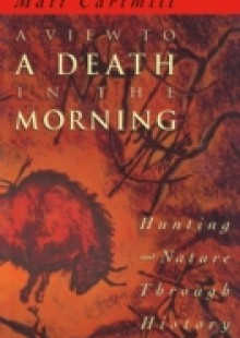 Обложка книги  - View to a Death in the Morning