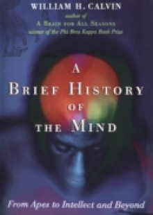 Обложка книги  - Brief History of the Mind: From Apes to Intellect and Beyond