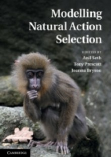 Обложка книги  - Modelling Natural Action Selection