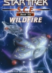 Обложка книги  - Star Trek: Corps of Engineers: Wildfire