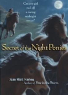 Обложка книги  - Secret of the Night Ponies