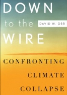 Обложка книги  - Down to the Wire: Confronting Climate Collapse