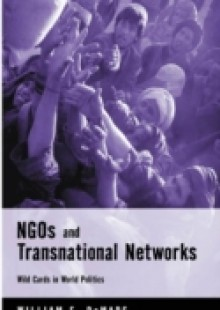 Обложка книги  - NGOs and Transnational Networks