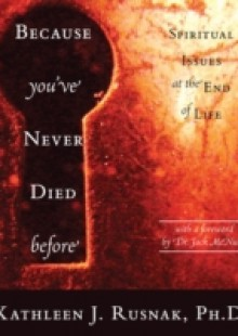 Обложка книги  - Because You've Never Died Before