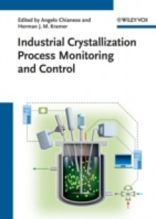 Обложка книги  - Industrial Crystallization Process Monitoring and Control