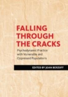 Обложка книги  - Falling Through the Cracks