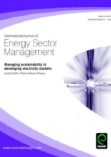 Обложка книги  - Managing Sustainability in Developing Electricity Markets