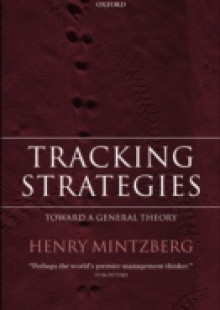 Обложка книги  - Tracking Strategies: Toward a General Theory