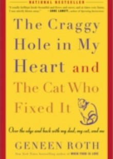 Обложка книги  - Craggy Hole in My Heart and the Cat Who Fixed It