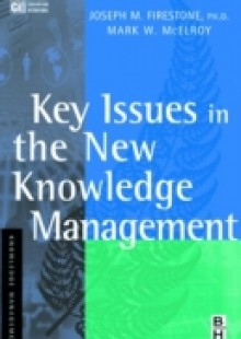 Обложка книги  - Key Issues in the New Knowledge Management