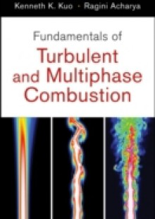 Обложка книги  - Fundamentals of Turbulent and Multi-Phase Combustion