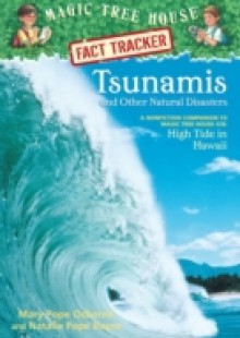 Обложка книги  - Tsunamis and Other Natural Disasters