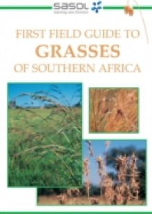 Обложка книги  - First Field Guide to Grasses of Southern Africa