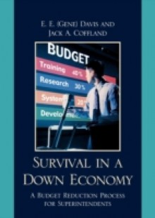 Обложка книги  - Survival in a Down Economy