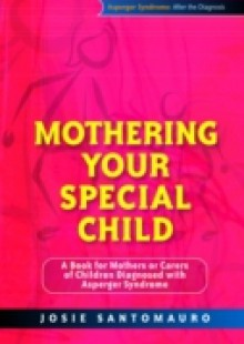 Обложка книги  - Mothering Your Special Child