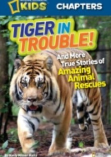 Обложка книги  - National Geographic Kids Chapters: Tiger in Trouble!
