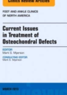 Обложка книги  - Current Issues in Treatment of Osteochondral Defects, An Issue of Foot and Ankle Clinics