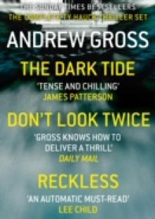 Обложка книги  - Andrew Gross 3-Book Thriller Collection 1