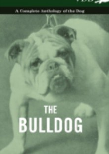 Обложка книги  - Bulldog – A Complete Anthology of the Dog -