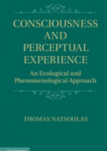 Обложка книги  - Consciousness and Perceptual Experience