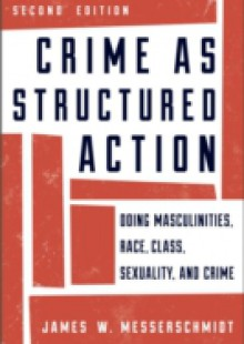 Обложка книги  - Crime as Structured Action