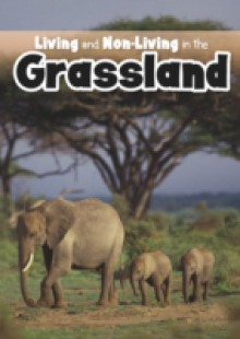 Обложка книги  - Living and Non-living in the Grasslands