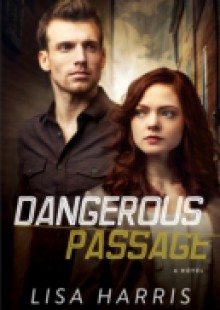 Обложка книги  - Dangerous Passage (Southern Crimes Book #1)