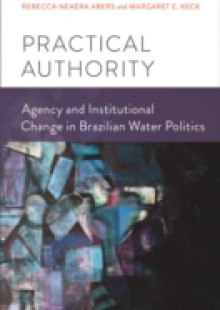 Обложка книги  - Practical Authority: Agency and Institutional Change in Brazilian Water Politics