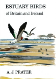 Обложка книги  - Estuary Birds of Britain and Ireland