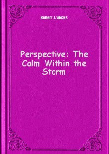 Обложка книги  - Perspective: The Calm Within the Storm