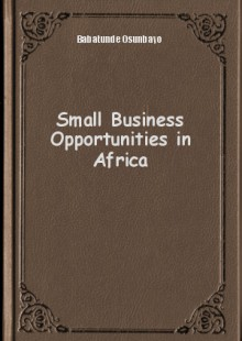 Обложка книги  - Small Business Opportunities in Africa