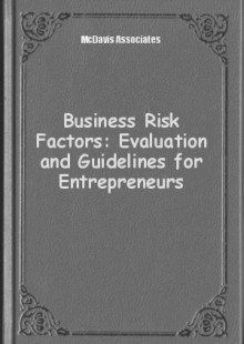 Обложка книги  - Business Risk Factors: Evaluation and Guidelines for Entrepreneurs